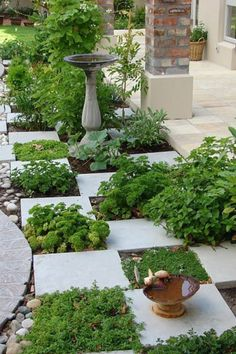Kitchen garden, for your herbs!--(Trying to figure out how to use stepping stones to formalize my veggie garden)-L Unique Garden, Herb Garden Design, Garden Paths, Garden Art, Garden Landscaping, Garden Tiles, Terrace Garden, Corner Landscaping Ideas, Conservatory Garden