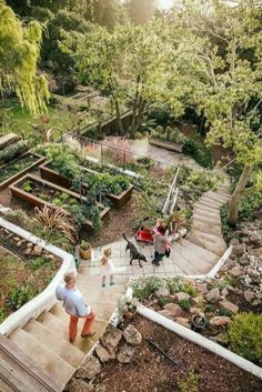 Steep Hillside Landscaping, Steep Backyard, Sloped Backyard Landscaping, Landscaping On A Hill, Sloped Yard, Hillside Garden, Pergola Garden, Terrace Garden, Landscaping Ideas