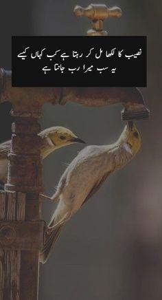 Inspirational Islamic Quotes in Urdu with Beautiful Images Best Quotations in Urdu Urdu Quotes With Images, Inspirational Quotes In Urdu, Best Quotes In Urdu, Funny Quotes In Urdu, Best Islamic Quotes, Muslim Love Quotes, Sufi Quotes, Allah Quotes, Hindi Quotes