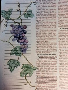 """John - """"I am the vine, ye are the branches: He that abideth in me, and I in him, the same bringeth forth much fruit; Bible Verse Art, Bible Quotes, Vine And Branches, Bible John, Bible Illustrations, Bible Study Journal, Fruit Of The Spirit, Illustrated Faith, Pretty Art"""
