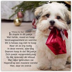 Mooiere wereld in een pakje. ( Wishes for you )