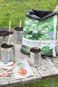 Gooi je groenteblikken niet weg maar maak er handige kweek potjes van! DIY: blikgroente van eigen kweek