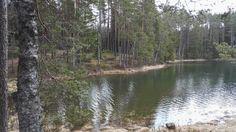 Valokuva - Google Kuvat #järvi vihreä #lake green #Finland