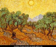 Olive Trees With Yellow Sky And Sun - Vincent Van Gogh…