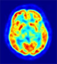 Neurociência E A Sabedoria Da Cabala ~ Cabala em Português - קבלה