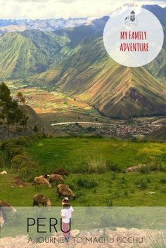My Family Adventure: A Journey to Machu Picchu, Peru with Kids