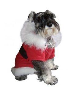 """Disfraz """"Pet Pals"""" Santa Claus"""