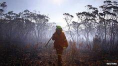 Australian bushfires fan global warming debate