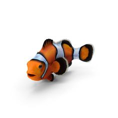 Clownfish Soundboard