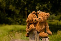 couples in love | PhotoAmbiance › Portfolio › Bear couple in love