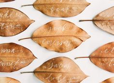 Place card for wedding??? Different colours, different leaves? However, may be dirty. lol