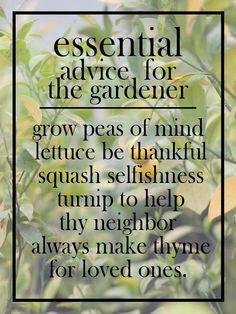 advice for the gardener