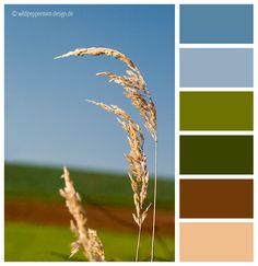 #Farbpalette, #Herbst, Gras, gedeckte Farben, Farbinspiration // © wildpeppermint-design.de