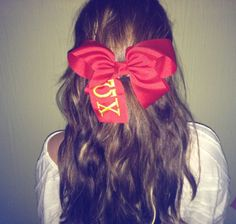 A Rule For All Sorority Girls: Bows Before Bros!    now thats funny people.........