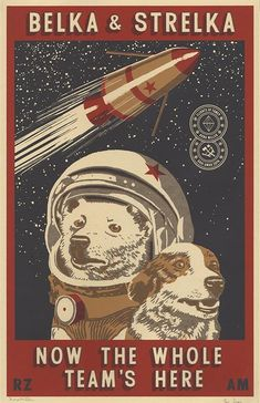 Belka and Srelka Screenprint I designed and printed this with From her humble beginnings as a stray dog on the streets of Moscow, Laika was picked up by the Soviet space program and launched into outer space in Laika Dog, Belka And Strelka, Propaganda Art, Matchbox Art, Soviet Art, Retro Futurism, Cool Posters, Grafik Design, Dog Art