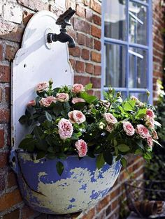 Enamel faucet drip catcher container planter.  I have to look for one of these.