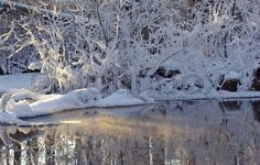 "Buy the royalty-free Stock image ""White snow and reflections on winter pond"" online ✓ All image rights included ✓ High resolution picture for print, web. High Resolution Picture, Pond, Reflection, Stock Photos, Winter, Pictures, Outdoor, Image, Winter Time"