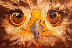 Hawk Eyes by Nancy Merkle Original Paintings and Fine Art Reproduction Prints