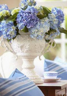 a light blue hydrangea bouquet Deco Floral, Arte Floral, Floral Design, Design Art, Design Ideas, Interior Design, Hortensia Hydrangea, Blue Hydrangea, Hydrangeas
