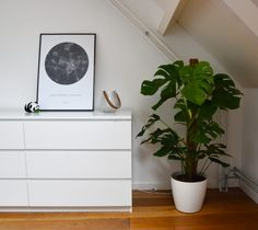 Our new house: upstairs - Anne Travel Foodie plant bedroom Monstera Amsterdam Houses, Big Bedrooms, Extra Bedroom, Apartment Goals, New Beds, Background For Photography, Foodie Travel, Storage Boxes, New Kitchen