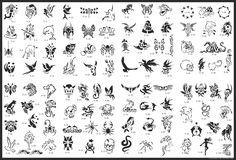 new zealand bird stencil Stencils Tatuagem, Tattoo Stencils, Airbrush Tattoo, Mini Tattoos, Golden Phoenix, Phoenix Bird Tattoos, Bird Stencil, Type Tattoo, Book Tattoo