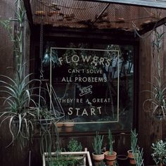 Image via We Heart It https://weheartit.com/entry/172892108/via/2659899 #cute #dark #date #ethereal #fairy #flowers #funny #happy #hippie #indie #life #live #love #nature #pale #photography #plants #quote #romantic #shop #shopping #smile #succulent #sweet #travel #vintage #wanderlust #weheartit #positivequote #independentbusiness