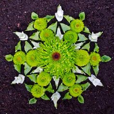 mandalas made of flowers and other natural items -- amazing!