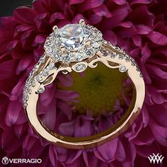 20k Rose Gold Verragio Split Shank Halo Diamond Engagement Ring from the Verragio Insignia Collection.