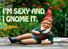 @Monica Forghani Forghani Voss Klein LOL I want to get this for you!!! A sexy gnome!!