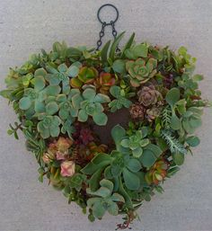 "12"" succulent heart wreath......I must take the time to make one this year. I just love it !"