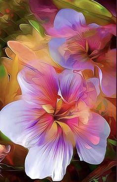 Colorful Wallpaper, Flower Wallpaper, Wallpaper Backgrounds, Phone Wallpapers, Glitter Wallpaper, Screen Wallpaper, Wallpaper Quotes, Exotic Flowers, Blue Flowers
