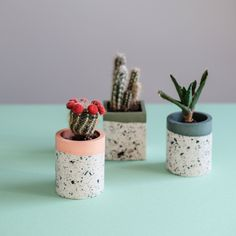 Cute mini plant pots made from jesomite by Bristol maker Viv Yapp. 91 Magazine talks to Viv about her small business started during lockdown. Interior Photography, Plant Pots, Indie Brands, Beautiful Interiors, Creative Business, Bristol, House Plants, Im Not Perfect, It Cast