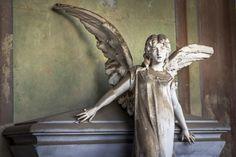 Angel and Flower. Cimitero Monumentale di Milano.