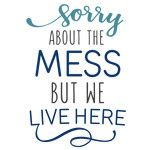 sorry about the mess phrase