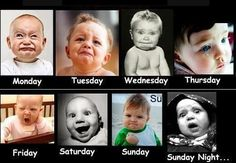 ONE WEEK FACES