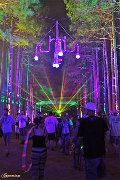 electric forest rothbury | Cremerica » Electric Forest Music Festival 2012/Rothbury, MI