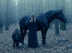 wydra - Twilight. . Zdjęcie 106264