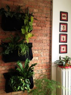 5 Bonuses of Plants in Small Spaces