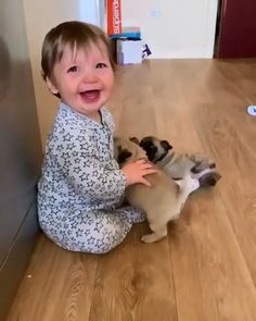 Animals Discover New Frieeends ! Cute Funny Babies, Cute Funny Animals, Cute Baby Animals, Animals And Pets, Wild Animals, Cute Baby Videos, Cute Animal Videos, Funny Baby Memes, Funny Dogs