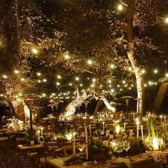 Troian Bellisario's boho wedding had the prettiest glamping theme! To end the celebration, a woodland wedding reception took place - the string lights make this outdoor venue look SO magical.