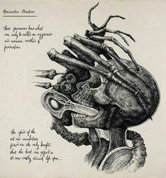 For fans of the Alien movies Alien Vs Predator, Predator Art, Giger Art, Hr Giger, Xenomorph, Saga Art, Giger Alien, Science Fiction, Alien Concept Art