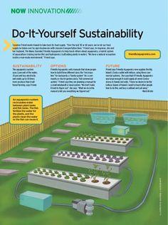 Do-It-Yourself Sustainability - Hawaii Business - May 2010 - Hawaii