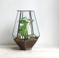 Large Vintage Glass Geometric Terrarium by ethanollie on Etsy. $155.00 USD, via Etsy.