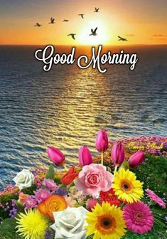May God bless you and your family, Enjoy this day for it was given to us as a gift From the Lord.💕 Good Morning Beautiful Pictures, Good Morning Nature, Good Morning Cards, Good Morning Beautiful Images, Image Beautiful, Good Morning Photos, Good Morning Greetings, Gud Morning Images, Good Morning Massage