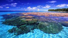 Islas Marshall    Para bien de los viajeros que aman las experiencias auténticas, estas islas son uno de los secretos mejor guardados del Pacífico: sorpresivamente, los grandes resorts aún no llegan a este archipiélago para bien de la vida tranquila de los pobladores y la riqueza de la fauna acuática sin parangón en todo el globo. En sus aguas cristalinas habitan más de mil especies de peces y más de 200 tipos de corales, el paraíso de quienes aman el mar y la vida marina.