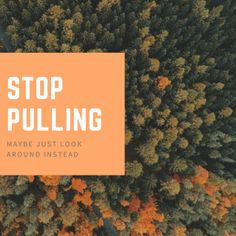 Stop Pulling