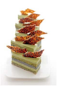 Matcha goma entremet - This looks amazing!