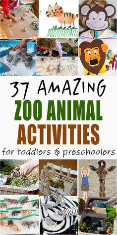37 Amazing Zoo Animal Activities - HAPPY TODDLER PLAYTIME Zoo Activities Preschool, Zoo Crafts, Animal Activities For Kids, Animal Crafts For Kids, Toddler Learning Activities, Motor Activities, Jungle Theme Activities, Therapy Activities, The Zoo