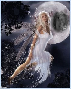 Fantasy Fairies...another beautiful pic!