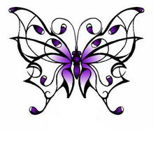 butterfly concept